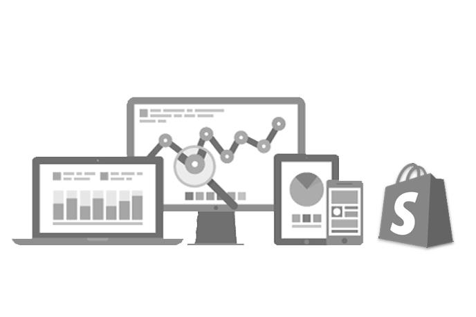 Shopify-website-audit